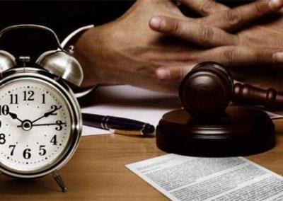 Deviation of client portfolio by a family business administrator. Precautionary measure of substitution of the administrator by a judicial administrator.