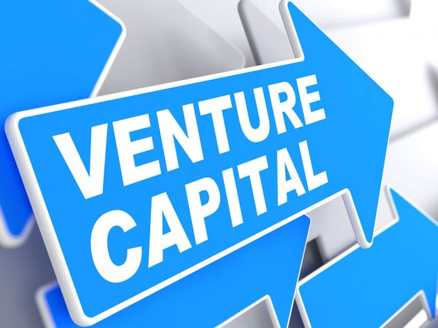 We advise Business Angels and Venture Capital companies