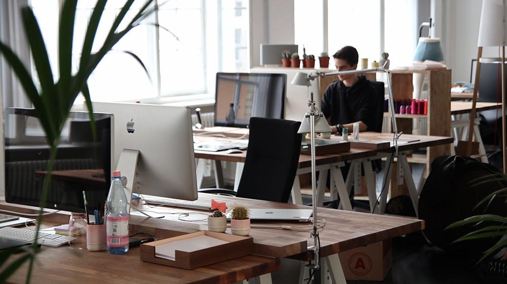 El concurso exprés como remedio a la situación de insolvencia de empresas sin activo.